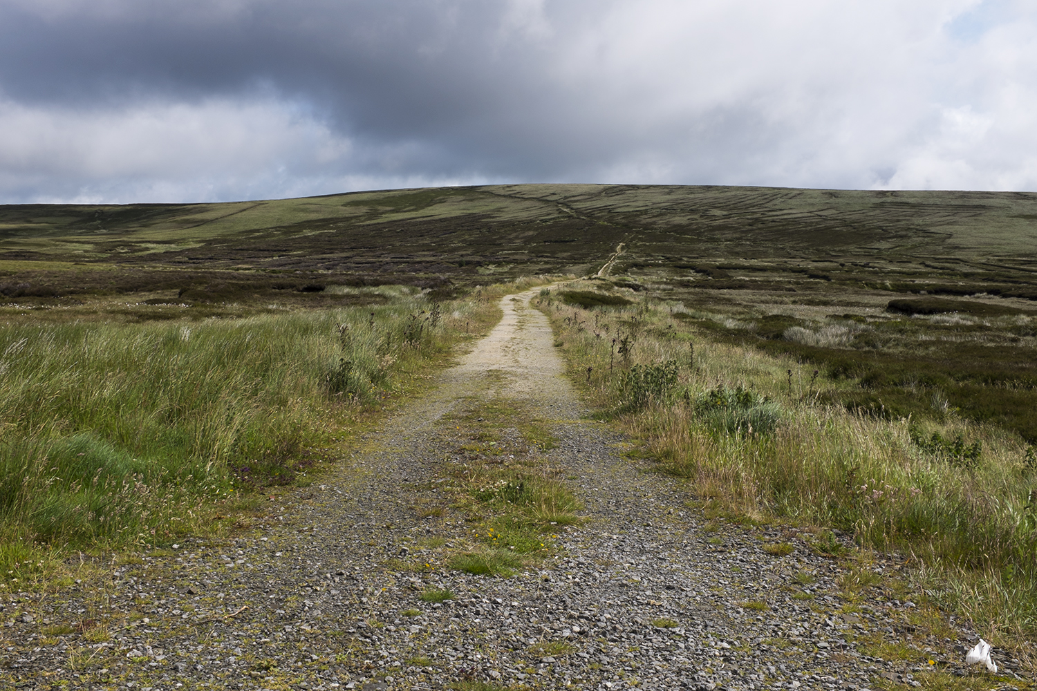 Wicklow Mountains #2