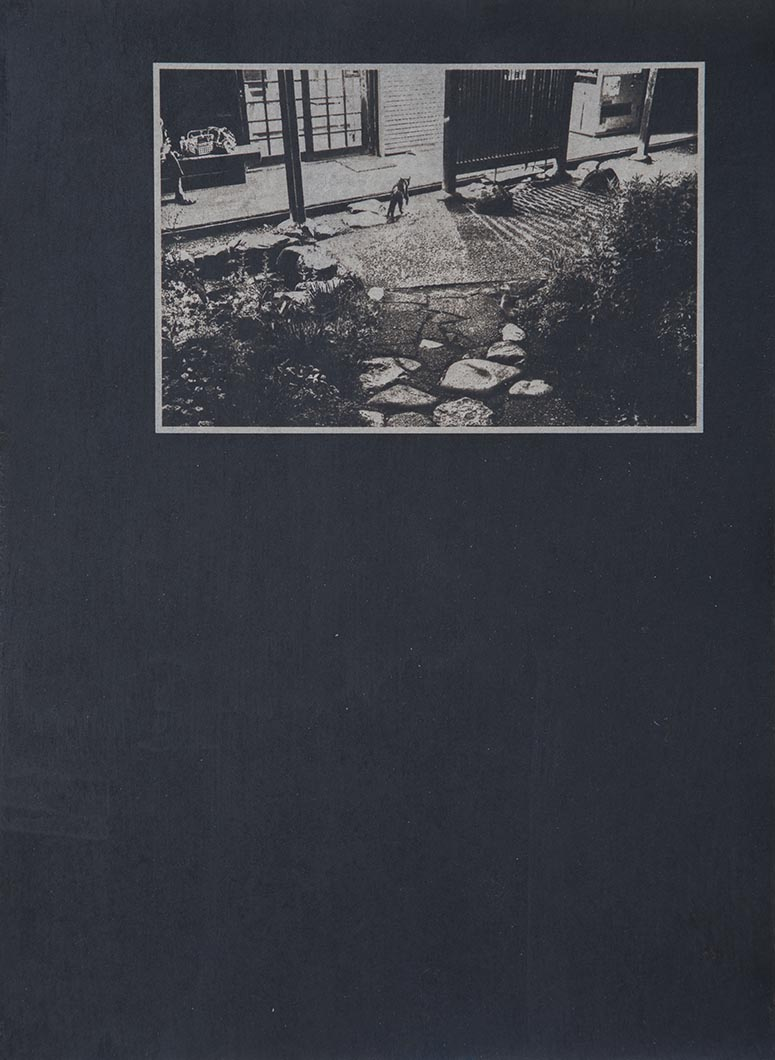 Cyanotype - Japan21