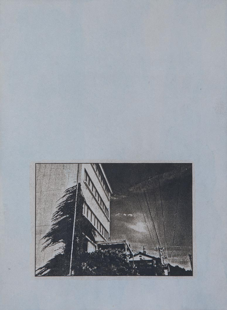 Cyanotype - Japan23