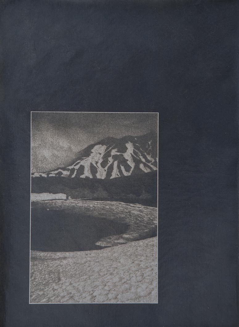 Cyanotype - Japan25