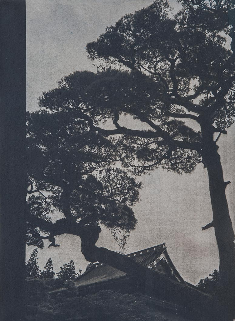 Cyanotype - Japan4