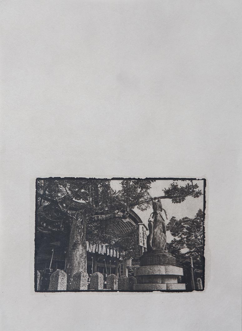 Cyanotype - Japan5